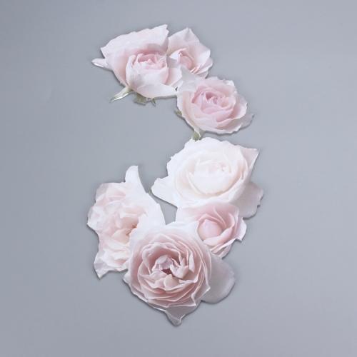 APEX亚克力3D立体玫瑰打印定制设计