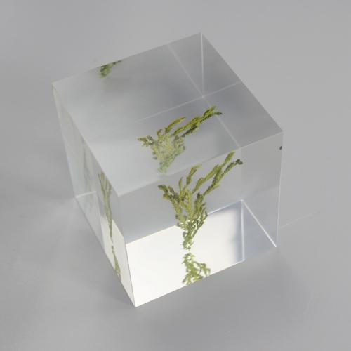 APEX定制亚克力创意礼品工艺摆件布景道具展示厂家